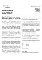Presseinformation Mirror and Windows